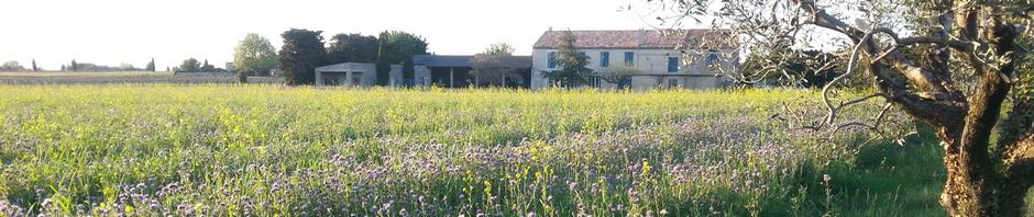 Domaine de Corinne Depeyre à Tulette Côtes du Rhône