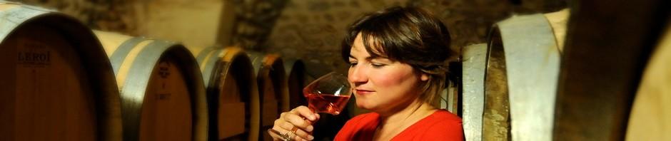 Dégustation vin dans les caves