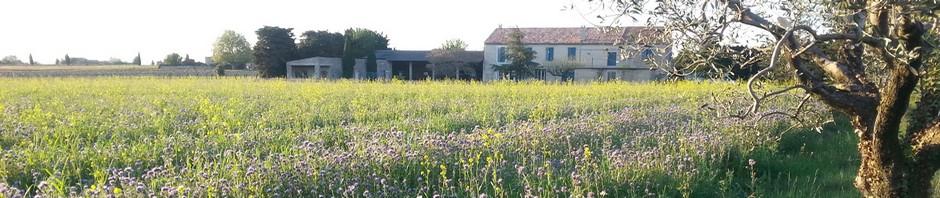 Domaine Corinne Depeyre à Tulette Côtes du Rhône