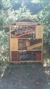 Insects' house