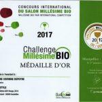 """Médaille d'or Challenge millésime bio 2017 """"Style rouge"""""""